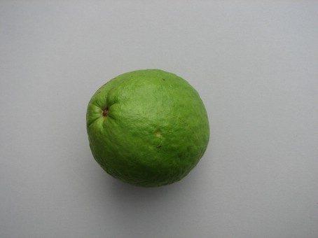 Guajava vrucht